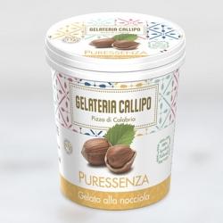 GELATO NOCCIOLA GR 310